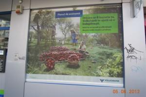 Mesh Volksbank